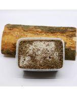 Rookzout Toscane 700 gram